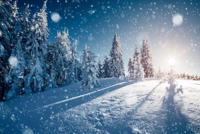 První prognózy: Jaká bude zima 2021/2022?